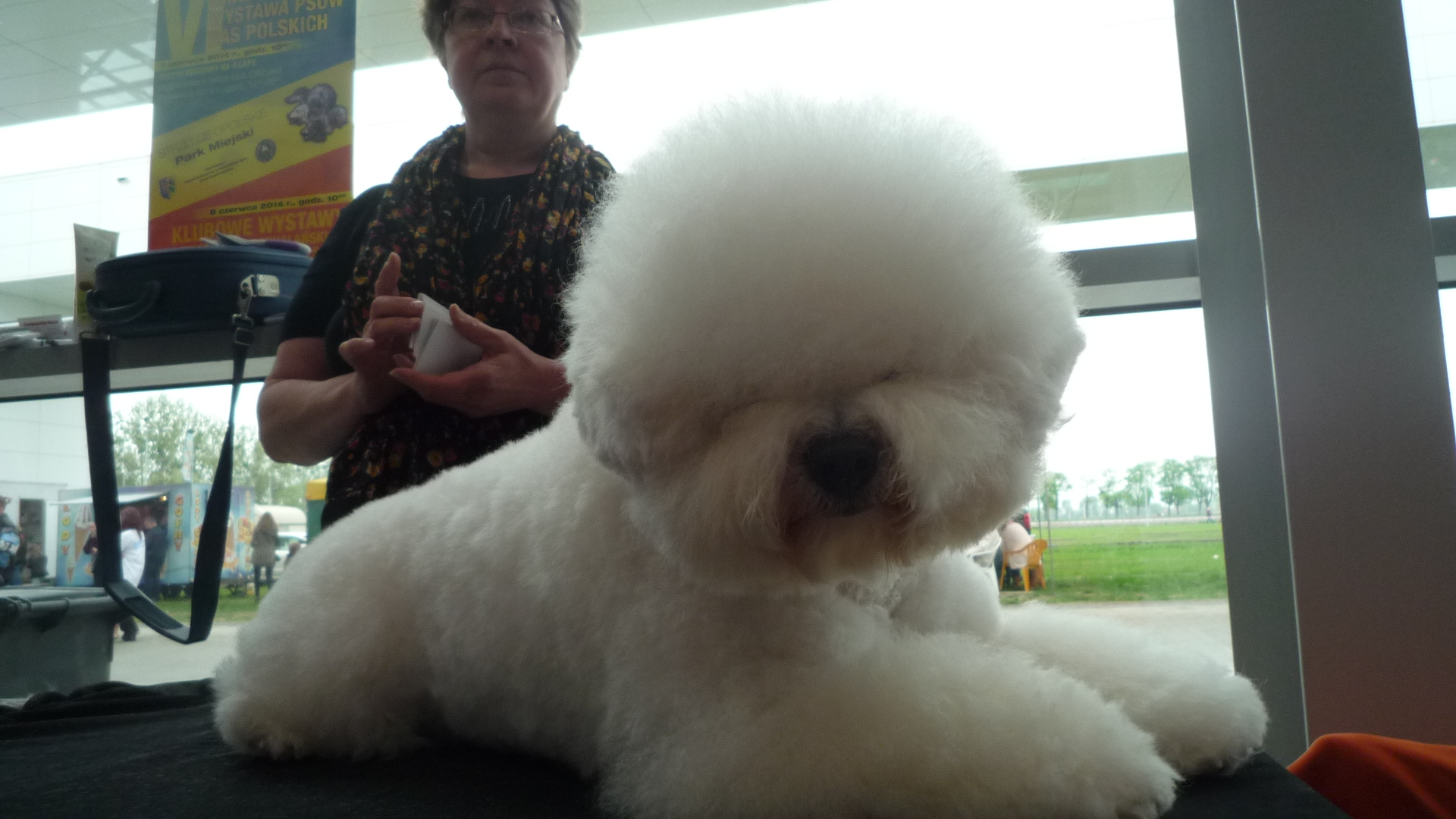 MIMI Minibelle Top Dog My precious