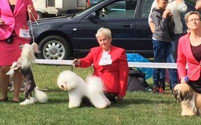 Dog Show SZCZYTNO 2018