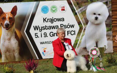 Dog Show Warszawa 8.09.2018